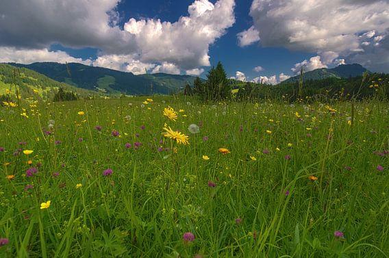 Austria - Tirol van Steffen Gierok