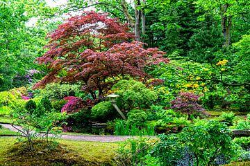 Japanse tuin (3) van Marly De Kok