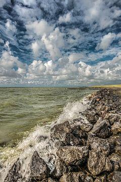 L'IJsselmeer près de Stavoren par une journée d'été ensoleillée et venteuse.