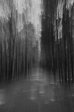 beam me up, schwarz-weiss von Steffi Hommel