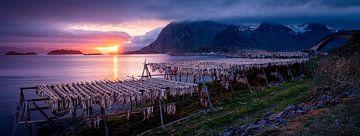 Mitternachtssonne auf den Lofoten, Norwegen von Jelle Dobma