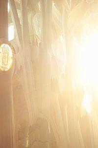 Interieur la Sagrada Familia