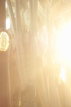 Innen la Sagrada Familia von Jessica van den Heuvel