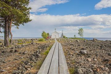Bijzonder landschap in Zweden van Bianca Kramer