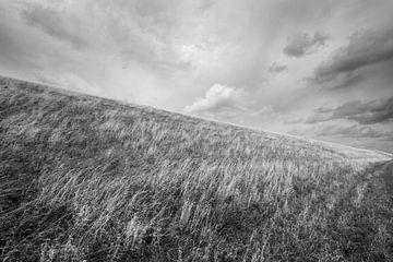 Deich bei Petten (N-H) von Peter Baak