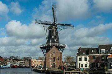 Mühle der Adriaan Haarlem von nol ploegmakers
