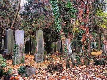 Friedhof 01 von Ilona Picha-Höberth