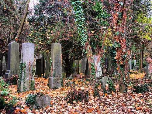 Friedhof 01 von