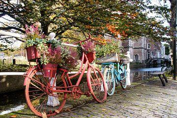 Fietsen in Delft van Danny Tchi Photography