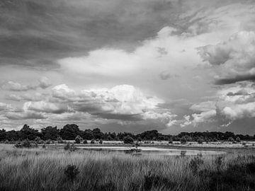 Wolken boven de Kampina zwart-wit