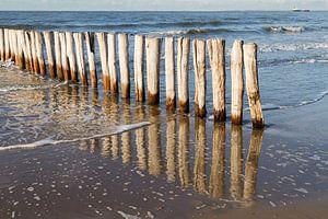 houten golfbreker palen bij kust Cadzand-bad - no. 1 van