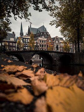 Leidsegracht in the herfst #3