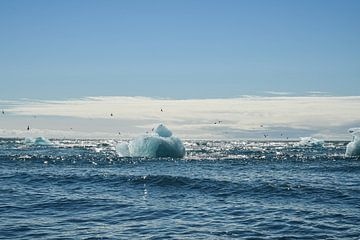 Floatende Eisberge auf Island von Robert Styppa