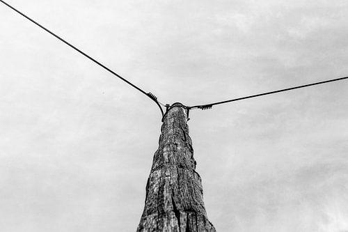 Verweerde paal met stroomdraden in zwart/wit
