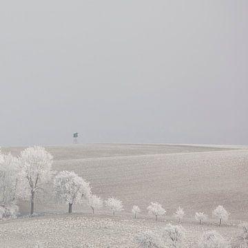 Winters heuvellandschap in Oostenrijk van