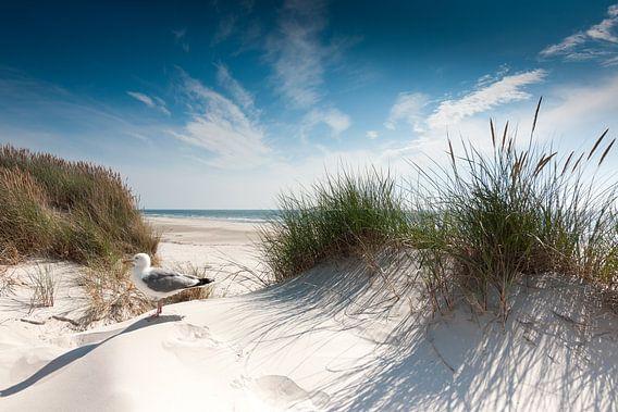 Noordzee - Sylt van Reiner Würz / RWFotoArt