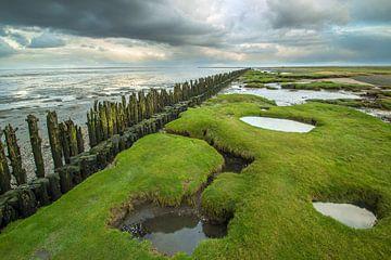 Wattenküste von Martzen Fotografie
