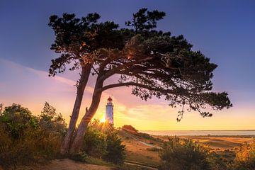 Sonnenaufgang am Leuchtturm Dornbusch auf der Insel Hiddensee von Fine Art Fotografie
