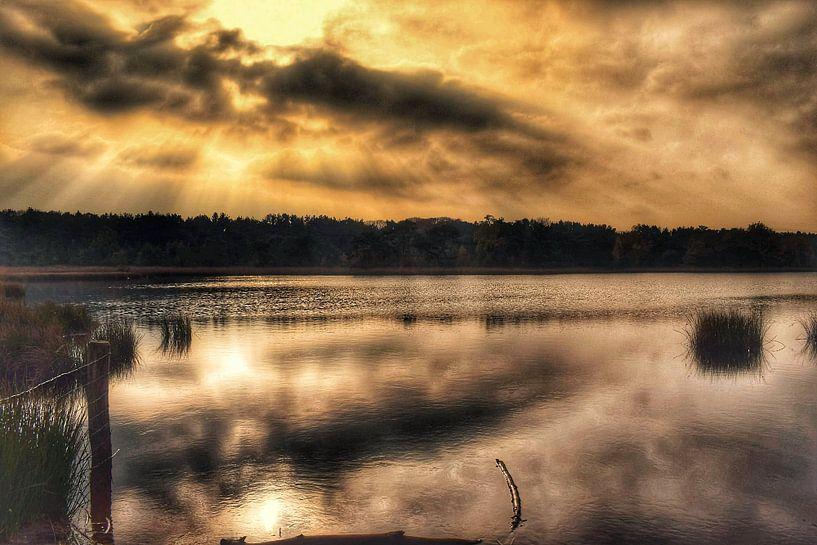 Oude meer van Angela Wouters