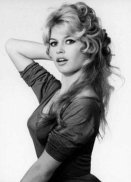 Brigitte Bardot van Brian Morgan