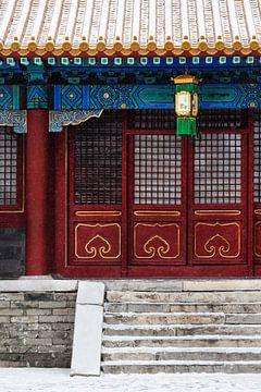 Detail van Verboden Stad in Beijing in de sneeuw