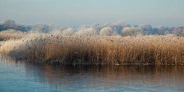 Winter in de Wieden van Annie Keizer