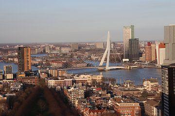 Erasmusbrug Rotterdam van Dick Schouten