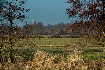 Landgoed Haar Zuijlens Utrecht van Roland de Zeeuw fotografie