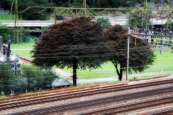 Natuur vs. cultuur langs het spoor