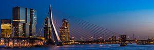 Panorama | Blue Hour bij de Erasmusbrug van