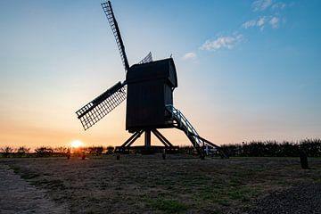 Nederlandse Standard molen van henry hummel