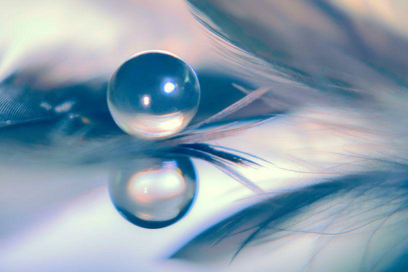 Reflectie (reflection) van druppel en veertjes. van Marianne Twijnstra-Gerrits