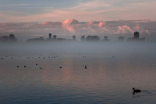Mist in Rotterdam