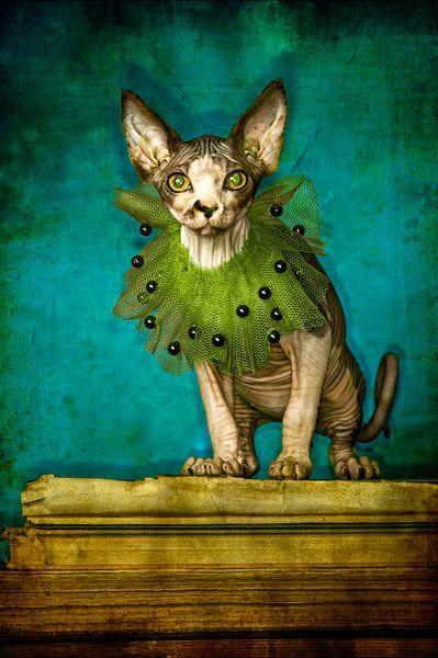 Green collar van Carla Broekhuizen