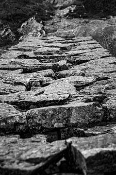 Steinteppich von Twan van Vugt