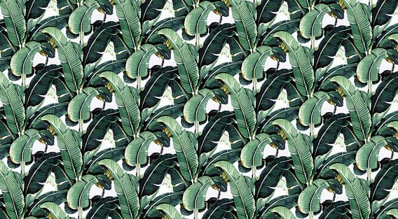 Matinique Banana Leaf 2