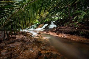 Waterval met tropische palmen, waterfall with tropical vegetation
