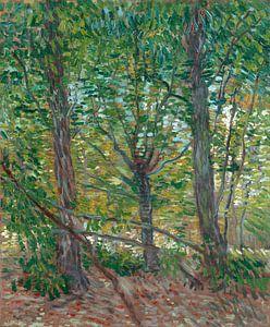 Vincent van Gogh, Bomen