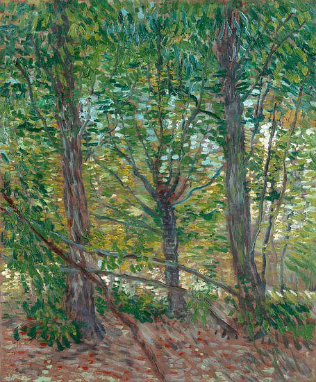 Vincent van Gogh, Bomen van 1000 Schilderijen