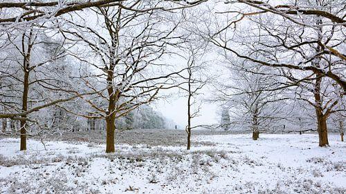 Frozen Nature - Another Version van Gisela Scheffbuch