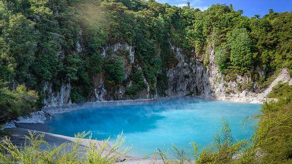 Echokrater in de vulkanische vallei, Noordereiland, Nieuw Zeeland van Rietje Bulthuis