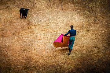 Stierengevecht Stier met Matador van Dieter Walther