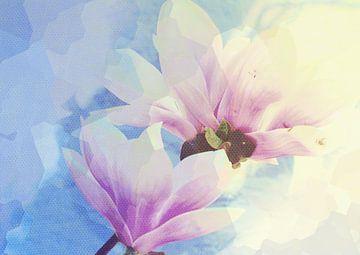 Magnolienblüten 3 van Rosi Lorz