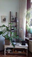 Kundenfoto: Der Distelfink von Carel Fabritius von Meesterlijcke Meesters, auf leinwand