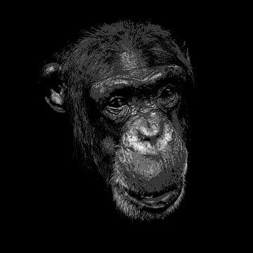 Chimpansee in zwart-wit van Emajeur Fotografie