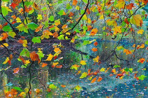Herfst: festival van bladeren van