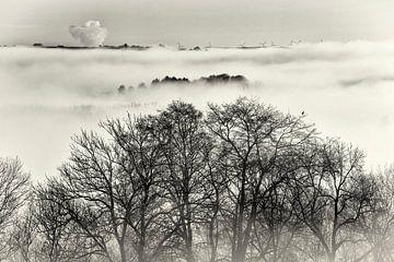 Mist in het Heuvelland van Rob Boon