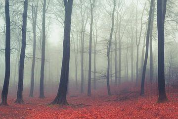 Laubwald im Nebel von Dirk Wüstenhagen