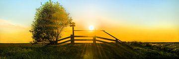 Noorderleeg nevel en zonlicht sur Harrie Muis