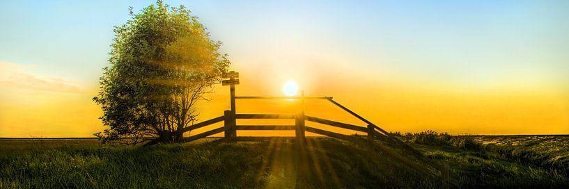 Noorderleeg nevel en zonlicht van Harrie Muis